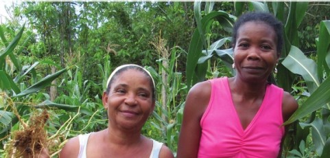 Agroecology: Exploring opportunities for women's empowerment based on experiences from Brazil