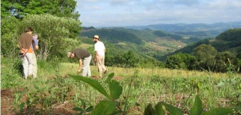 The process of Agroecology Transition – A case study from Southern Brazil