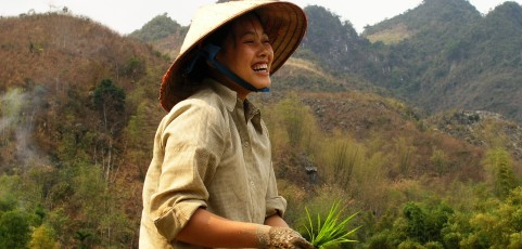 Preserving and Increasing Agriculture Biodiversity: In-situ Conservation of Upland Rice in Krong No, Daklak, Viet Nam