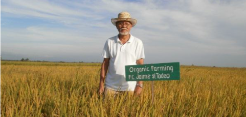 Organic farming at the Center stage in South East Asia