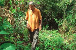 Una iniciativa institucional para preservar la biodiversidad