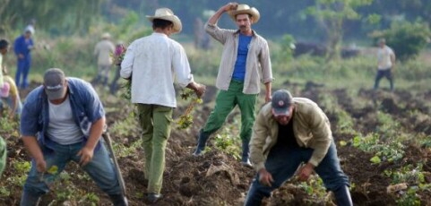 What Cuba can teach us about food and climate change