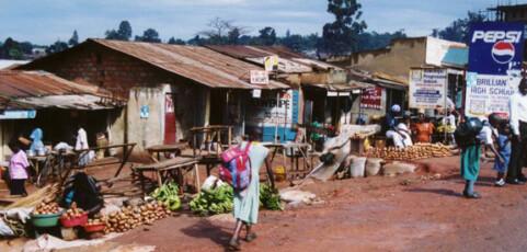 Conservation agriculture: a Uganda case study