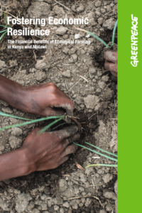REPORT | Fostering Economic Resilience. The Financial Benefits of Ecological Farming in Kenya and Malawi