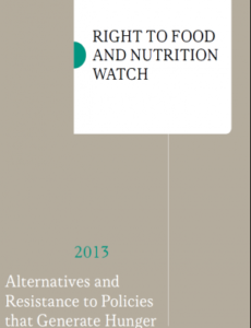 Right To Food and Nutrition Watch 2013