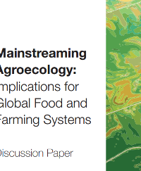 Mainstreaming Agroecology: Implications for Global Food and Farming Systems