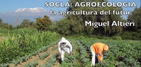 La AGRICULTURA del FUTURO – Miguel Altieri