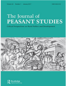 Taking agroecology to scale: the Zero Budget Natural Farming peasant movement in Karnataka, India
