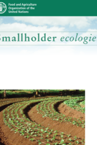 Smallholder ecologies