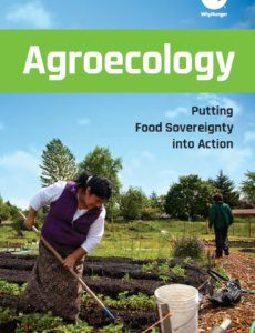 REPORT | Agroecology. Putting food sovereignty into action