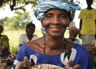 Agroforestry to Improve Farm Productivity in Mali