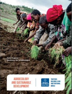Agroecology and Sustainable Development