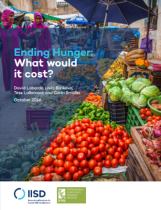 Ending Hunger: What would it cost?