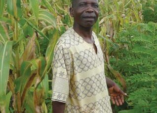 Agroforestry for Food Security in Malawi