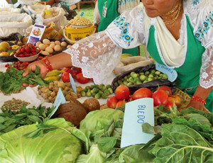 Linking family nutrition in city and country