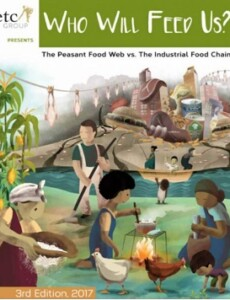 Who Will Feed Us? The Industrial Food Chain vs the Peasant Food Web