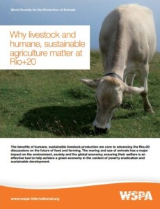Why livestock and humane, sustainable agriculture matter at Rio+20