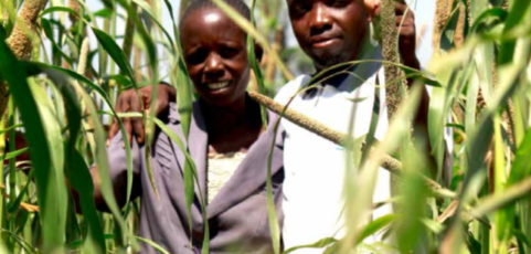Agroecology. The Bold Future of Farming in Africa