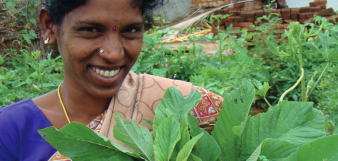 Building, defending and strengthening agroecology