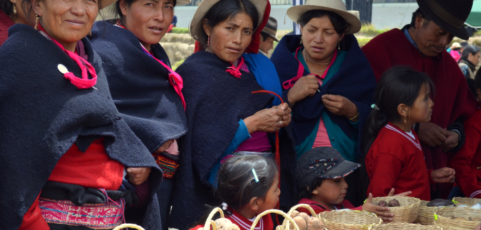 Giving new life to peasant seeds in Ecuador